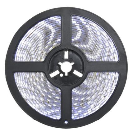 Fita de Led Branco Frio 5 Metros 12v 4.8w Bivolt LUX POWER - LUXE-3528BF
