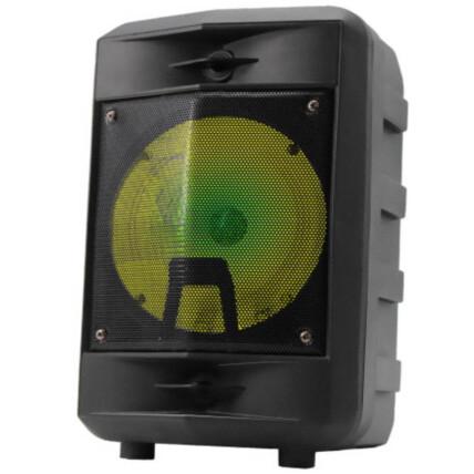 Caixa de Som Bluetooth Usb Portátil 34x21x17cm com Microfone Grasep - D-BH6105